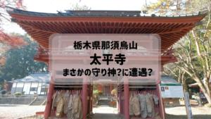栃木県那須烏山市の歴史ある太平寺。蛇姫の墓にてまさかの遭遇。